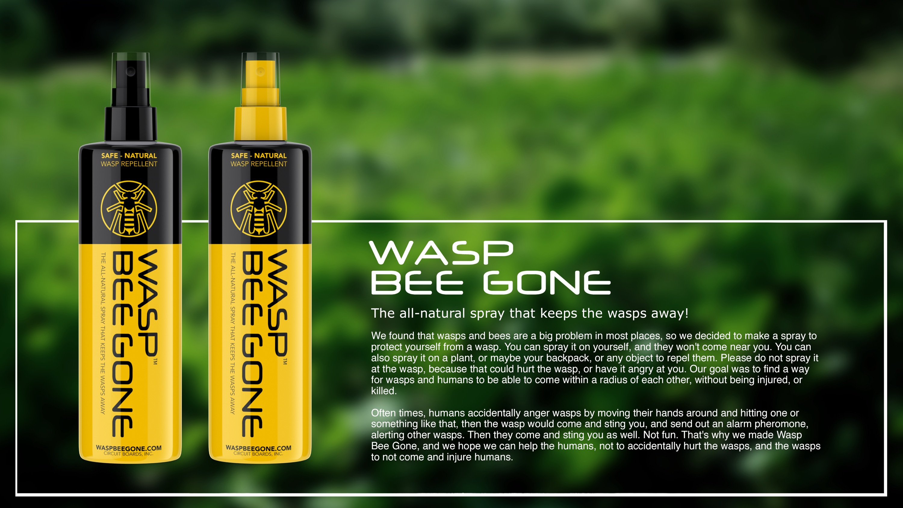 Wasp Bee Gone wasp repellent spray is currently in the testing phase. Our product's availability is expected to be Summer 2017.